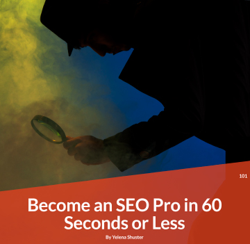 Become an SEO Pro in 6 Seconds or less